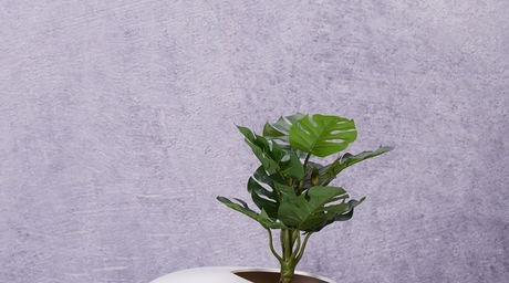 Liven up corner spaces with happy planters by The Golden Triangle
