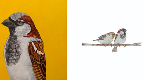 Artist and conservationist Rupa Samaria presents A Bird Call