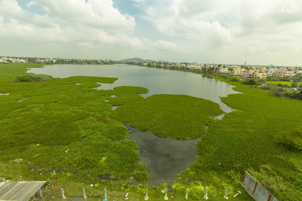 Grundfos, Cognizant, Corporate Social Responsibility, United Nations Sustainable Development Goals, Water and sanitisation, Lake Restoration, Sembakkam lake, Care Earth Trust, Indian Institute of Technology Madras, The Nature Conservancy